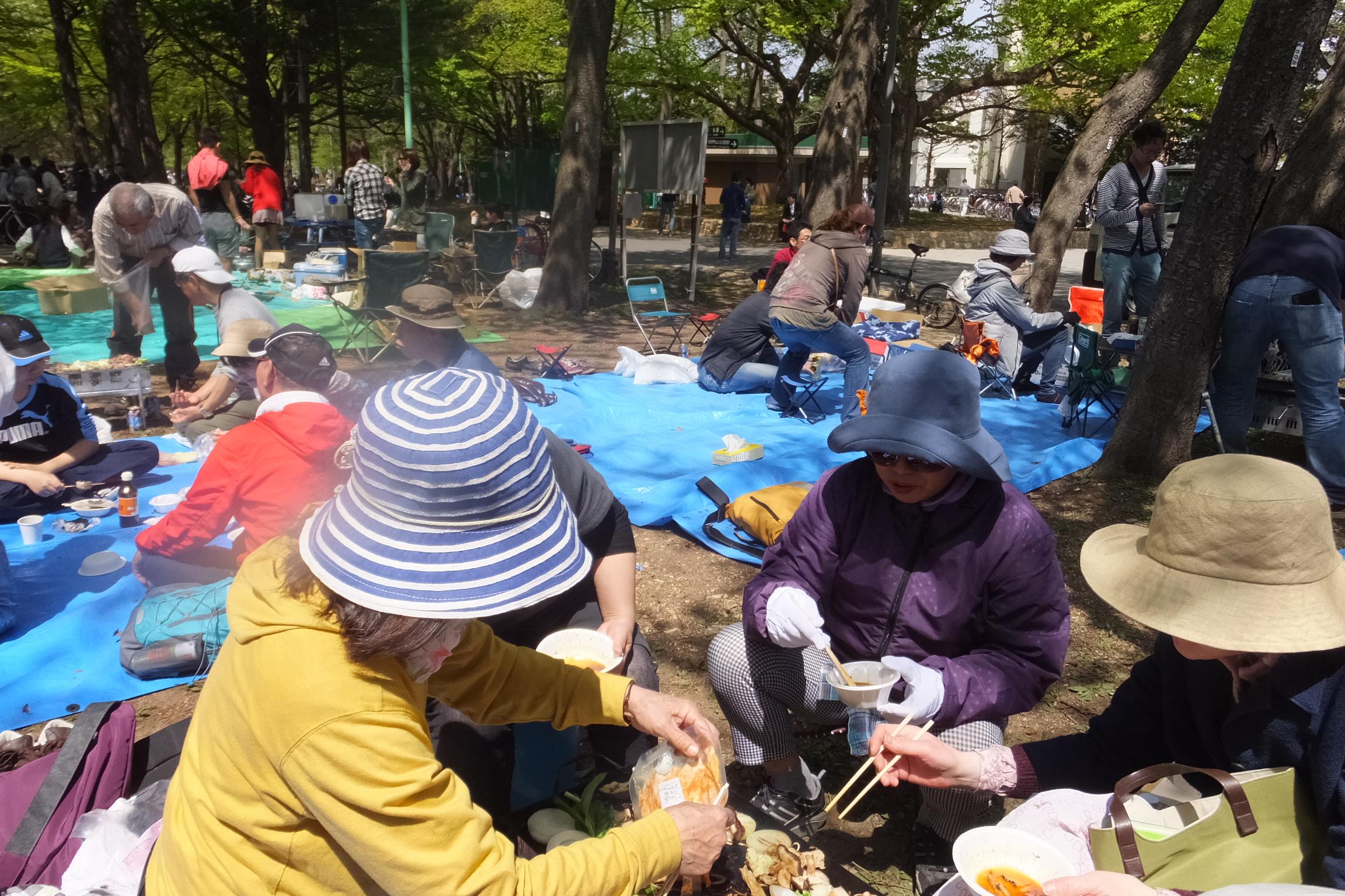円山公園お花見(2015.5.6)